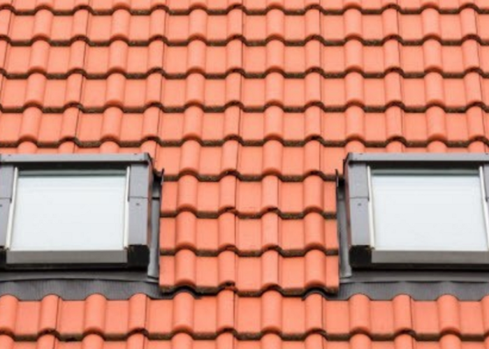 Two Roof Windows